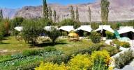 http://m.thegreatnext.com/Nubra Valley Camping Ladakh Leh Swiss Tents Trip Adventure Travel The Great Next