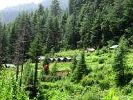 http://m.thegreatnext.com/Chakrata Uttarakhand Kanasar Forest Trip Green Canvas Resort Adventure Travel The Great Next