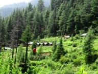 http://www.thegreatnext.com/Chakrata Uttarakhand Kanasar Forest Trip Green Canvas Resort Adventure Travel The Great Next