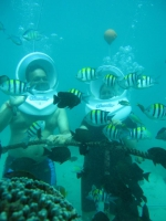 Sea Walking in Bali