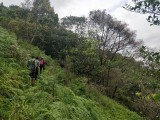 http://www.thegreatnext.com/Galibeedu Coorg Karnataka Trekking Forest The Great Next