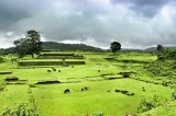 http://www.thegreatnext.com/Kodachadri Peak Karnataka Mookambika Tropical Forest Sanctuary Trekking The Great Next