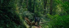 http://m.thegreatnext.com/Kodachadri Peak Karnataka Mookambika Tropical Forest Sanctuary Trekking The Great Next