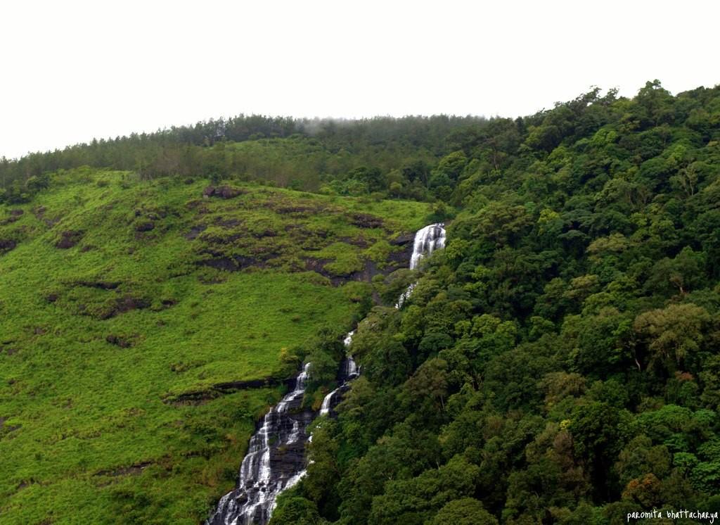 http://m.thegreatnext.com/Tadiandamol Coorg Karnataka Trekking Greenery The Great Next