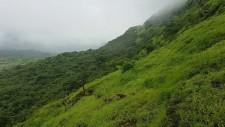 http://m.thegreatnext.com/Trekking Tikona Maharashtra Adventure Travel The Great Next