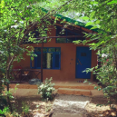 http://m.thegreatnext.com/Ramnagar Mud House Stay Nainital Uttarakhand Wildlife Spotting Camping Trekking Adventure Travel Nature The Great Next