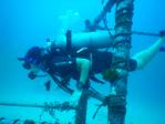 http://m.thegreatnext.com/PADI Advanced Open Water Diver Course Koh Tao Thailand Bangkok Scuba Diving Water Sports Adventure Travel