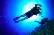 http://m.thegreatnext.com/Koh Tao Diving Bangkok Thailand Divers Water Sports Destinations Travel Adventure
