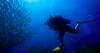 http://www.thegreatnext.com/Koh Tao Overnight Dive Trip Koh Samui Thailand Fun Diving Water Sports Adventure Travel Island