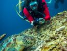 http://m.thegreatnext.com/PADI Advanced Open Water Diver course  Gili Air Bali Indonesia Travel Destinations Water Sports Scuba Course Adventure