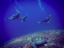 http://www.thegreatnext.com/PADI Discover Scuba Diving Gili Meno Lombok Indonesia Travel Destinations Water Sports Scuba Course Adventure