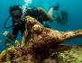 http://www.thegreatnext.com/PADI Open Water Diver course  Gili Trawangan Bali Indonesia Travel Destinations Water Sports Scuba Course Adventure