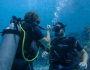 http://m.thegreatnext.com/PADI Open Water Diver course  Gili Trawangan Bali Indonesia Travel Destinations Water Sports Scuba Course Adventure