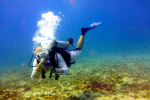 http://www.thegreatnext.com/PADI Open Water Diver course Gili Meno Lombok Indonesia Travel Destinations Water Sports Scuba Course Adventure