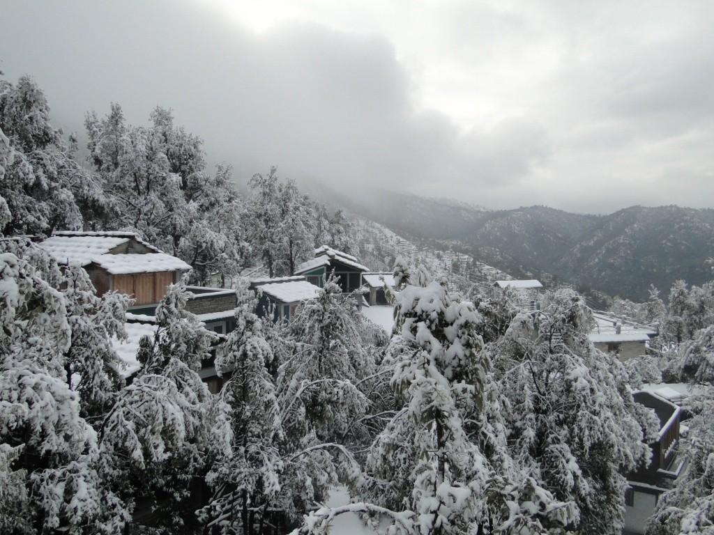 http://www.thegreatnext.com/Binsar Eco Camping Dhaulchhina Wildlife Sanctuary Uttarakhand Advenutre Travel The Great Next