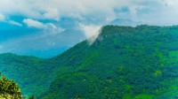http://m.thegreatnext.com/Paithalmala Western Ghats Camping Greenery Group The Great Next