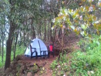 http://www.thegreatnext.com/Paithalmala Western Ghats Camping Greenery Group The Great Next
