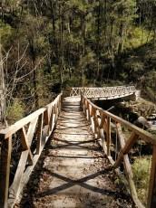 http://www.thegreatnext.com/Grahan Village Trek Himachal Pradesh Snow Kasol Barshaini Adventure Travel The Great Next