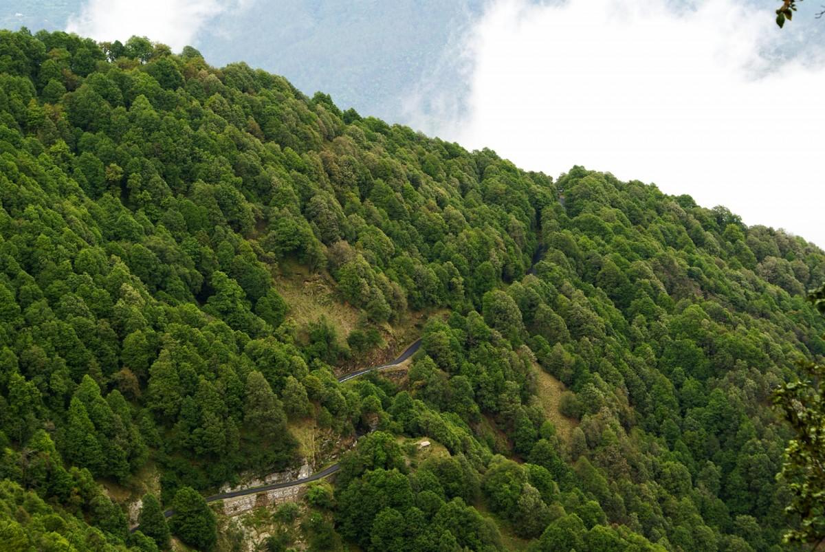 http://www.thegreatnext.com/Motorbiking Motorcycling Uttarakhand Rishikesh Nainital Deoriatal Chopta Lake Mountain Pass  Mountains Adventure Travel The Great Next