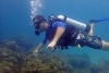 http://www.thegreatnext.com/Phi Phi Island Shark Point Phuket Thailand Scuba Diving The Great Next