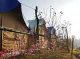 http://www.thegreatnext.com/Kanatal Campingm Swiss Tents Uttarakhand Dehradun Rishikesh Adventure Travel The Great Next