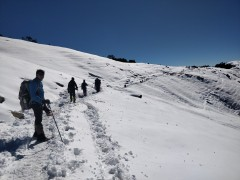 http://m.thegreatnext.com/Brahmatal Lake Trek Uttarakhand Adventure TravelThe Great Next