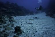 http://m.thegreatnext.com/Discover Scuba Diving Gili Trawangan The Great Next