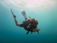 http://m.thegreatnext.com/PADI Open Water Diver Course Scuba Diving Gili Trawangan Bali The Great Next