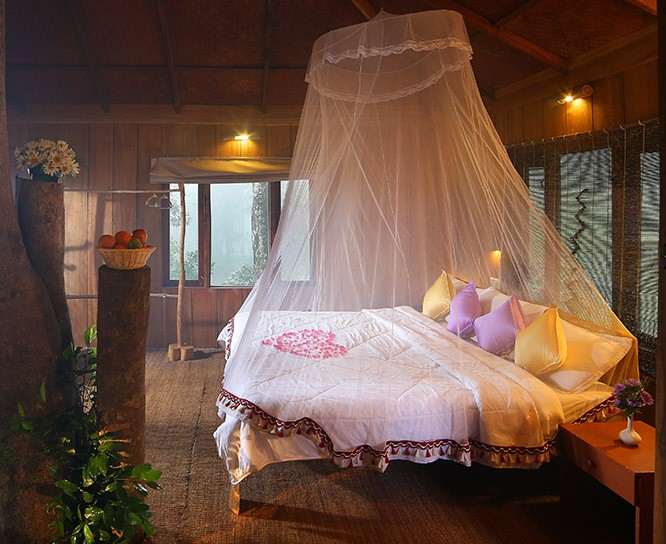 http://www.thegreatnext.com/Munnar Camping Tent Stay Safari Adventure Travel The Great Next