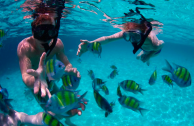http://m.thegreatnext.com/Phi Phi Islands Snorkeling tour Thailand Krabi Water Sports Adventure Travel Destinations