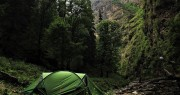 http://m.thegreatnext.com/Dayara Bugyal Alpine Meadows Trek Uttarakhand Adventure Travel The Great Next