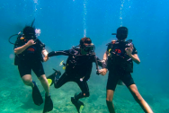 http://m.thegreatnext.com/PADI Scuba Diver course in Koh Phi Phi Thailand Water Sports Adventure Travel