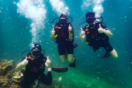 http://www.thegreatnext.com/PADI Open Water Diver course in Koh Phi Phi Thailand Water Sports Adventure Travel