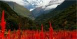 http://www.thegreatnext.com/Har Ki Dun Trek Dehradun Uttarakhand Trekking Camping Adventure Travel Destination Wilderness Mountain Valleys