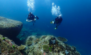 SSI Advanced Open Water Diver Course in Phuket