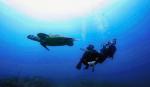 http://www.thegreatnext.com/Try Diving in Phuket Thailand Koh Phi Phi Racha Noi Racha Yai Water Sports Adventure Travel Destinations International
