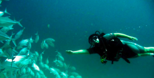 PADI Open Water Diver Course in Phuket
