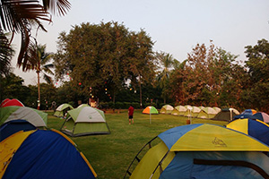 New Year Special: Camping in Dahanu