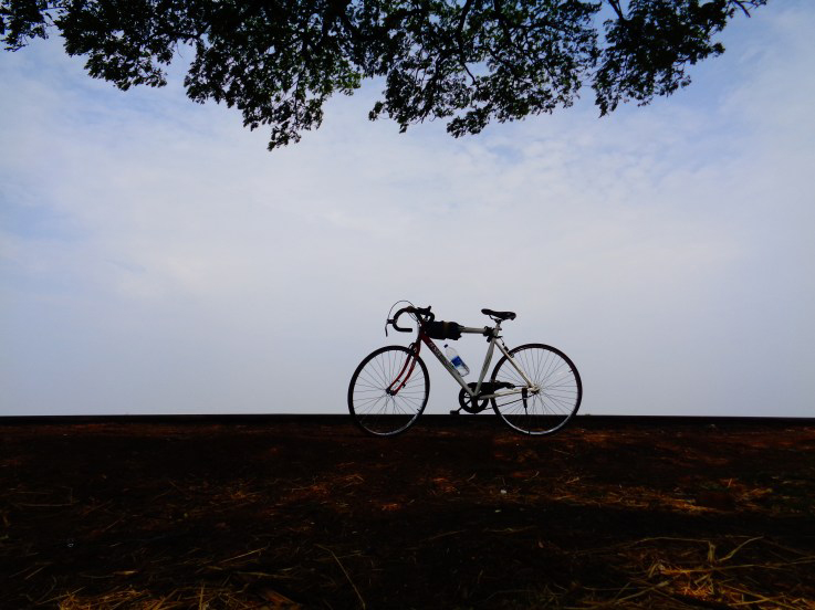 http://www.thegreatnext.com/Cycling Old Goa Panaji Adventure
