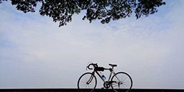 http://m.thegreatnext.com/Cycling Old Goa Panaji Adventure