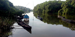 http://www.thegreatnext.com/Cycling Goa Islands Chorao Panaji Adventure