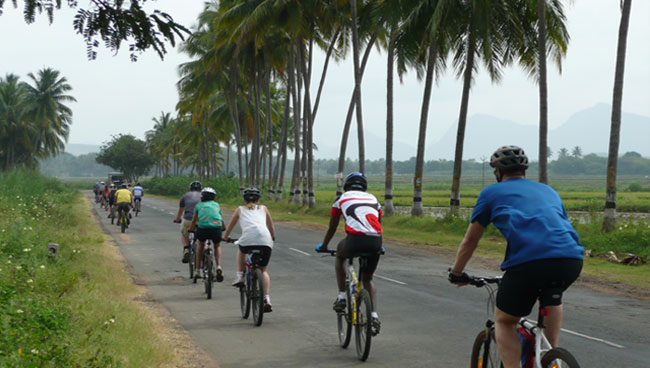 http://m.thegreatnext.com/Kerala Cycling Adventure Beach Backwaters Cochin