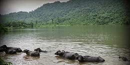http://m.thegreatnext.com/Kohoj Fort Trekking Sahyadri Adventure Maharashtra