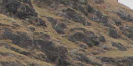 http://www.thegreatnext.com/Har ki Dun Trekking Adventure Uttarakhand Dehradun