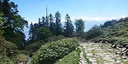 http://www.thegreatnext.com/Trekking Uttarakhand Kedarkantha Trek Adventure Snow Trek