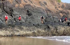 Ocean Trek in Arambol