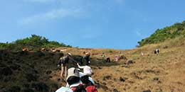/Goa Adventure Trekking Ocean Trek Neuti Hiking
