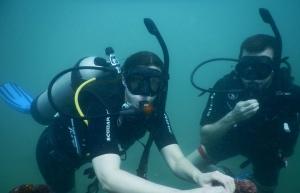 Try Scuba Diving in Goa