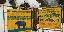 http://www.thegreatnext.com/Himalayan Budget Trekking Adventure Trekking Himachal Snow trek Dalhousie
