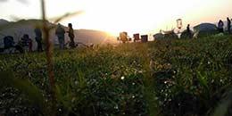http://www.thegreatnext.com/Maharashtra Karnala Adventure Camping Campsite